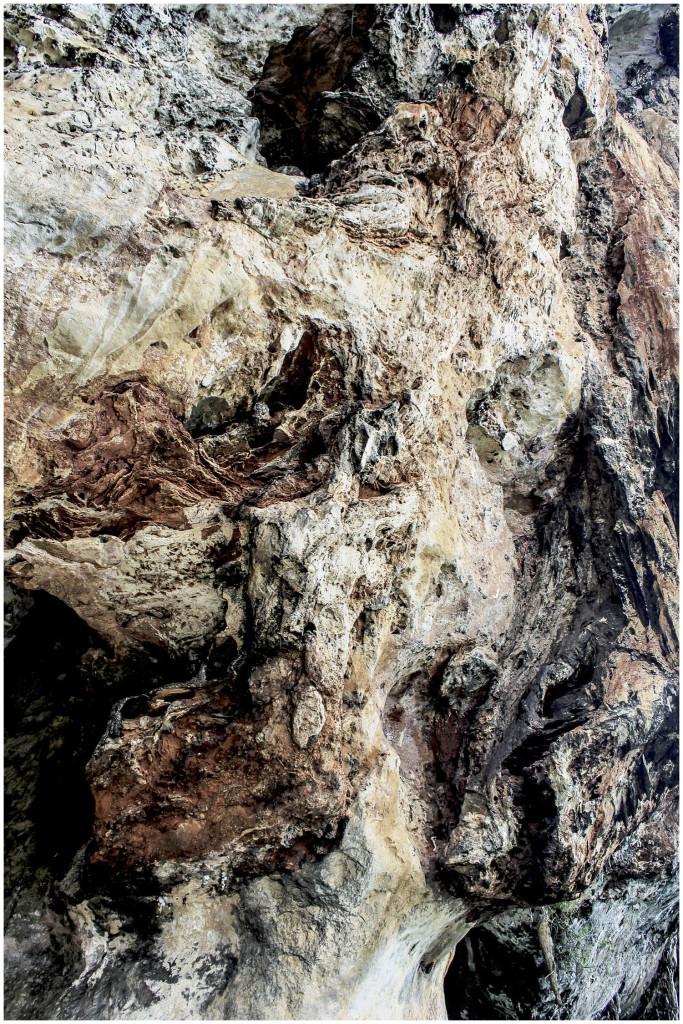 Limestone rocks up close