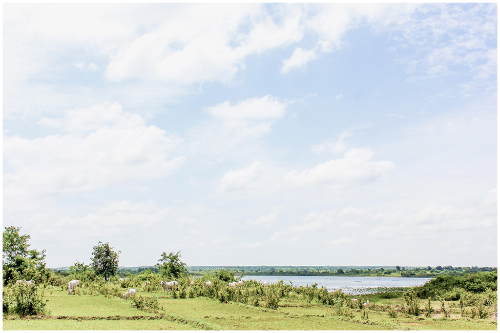 Kampong Cham countryside
